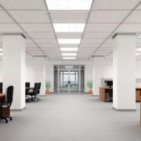 Indoor Commercial Fixtures
